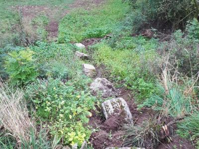 Begrünte Mulden mit Steinen zur Abflussbremsung