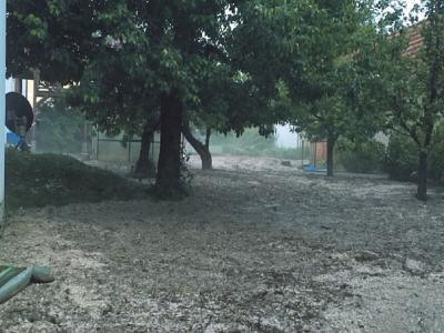Auch eine Streuobstwiese ist von Schlamm bedeckt.