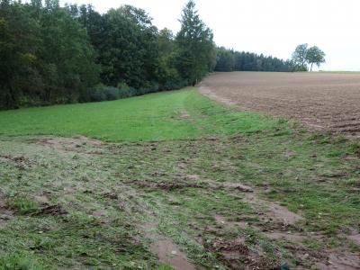 Die Abschwemmungen von diesem Feld wurden in einer Mulde aufgefangen.