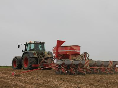 Aussaat von Mais im Mulchsaatverfahren (Bildquelle: Ruth Brummer)