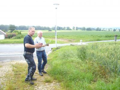 Kommunale Förderung von einjährigen Grünstreifen