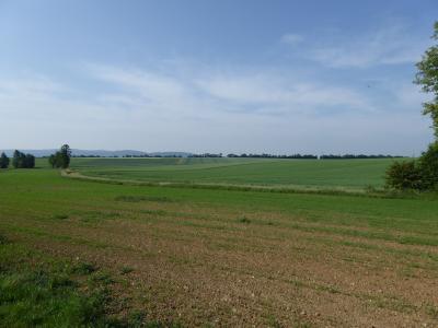Umwandlung von Ackerland zu extensivem Grünland entlang des Forstwiesengraben