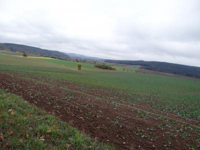 Landschaft bei Seßlach