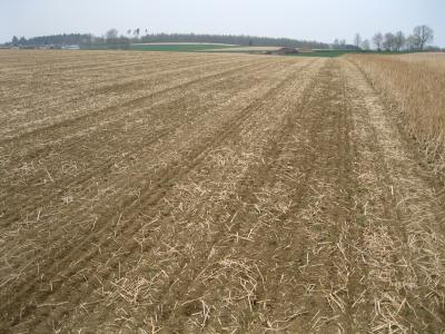 Fertiges Saatbett für Körnermaisaussaat