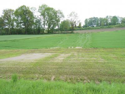 Ein Erosionsschutzstreifen fängt den Boden auf