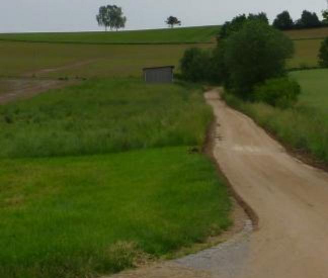 Schlammspur: Vom Maisfeld über den Feldweg in den Ort, Teugn Ende Mai 2016
