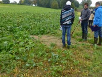 Sichtbare Bodenablagerungen nach Starkregen bei der Saat