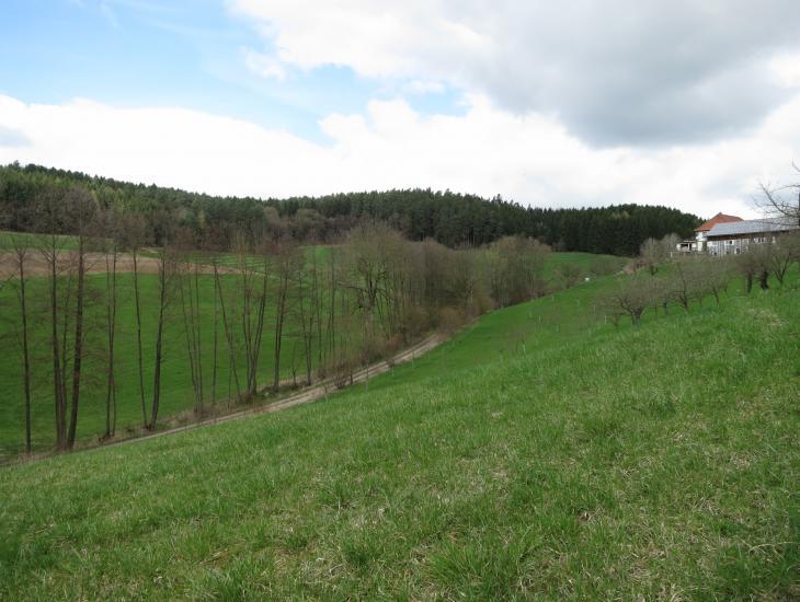 Die Landschaft im Projektgebiet Lessau-Lankendorf
