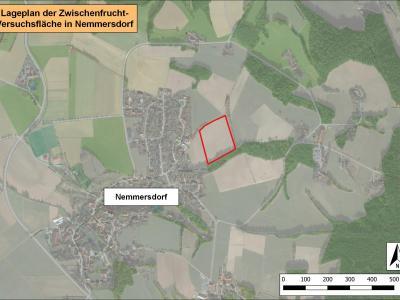Lageplan der Zwischenfruchtversuchsfläche in Nemmersdorf.