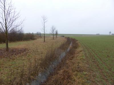 Bestehende Biotopflächen sollen besser genutzt werden