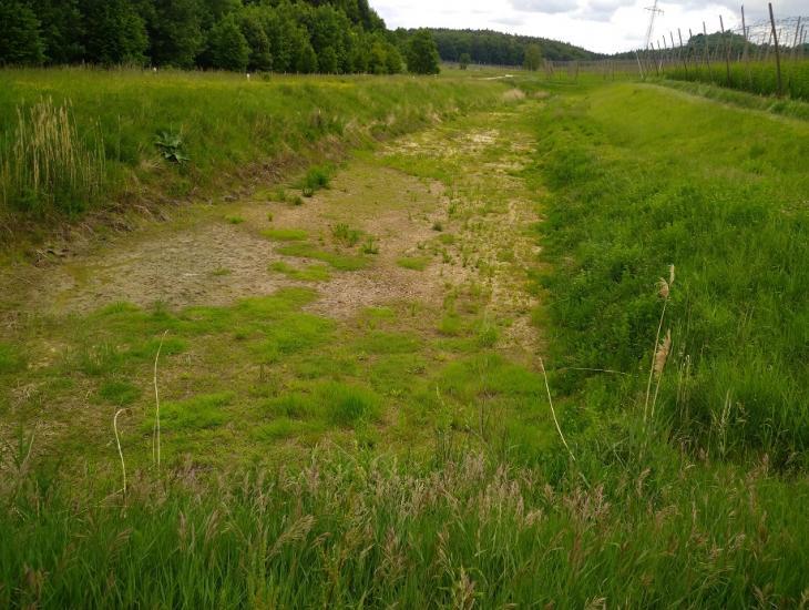 Eines von sechs Rückhaltebecken im Gemeindegebiet Aiglsbach, ein Erdbecken mit ca. 4000 m³
