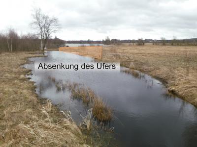 In diesem Bereich soll das Ufer abgesenkt werden