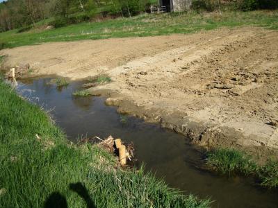 Todholzverbauung und Uferabflachung