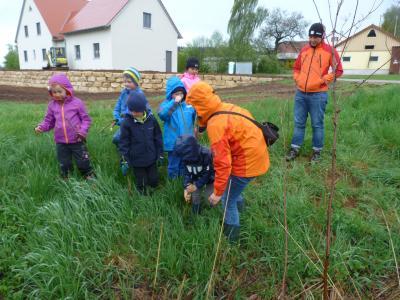 Pflanzaktion mit dem Kindergarten Heidenheim