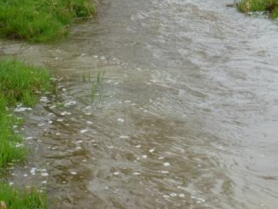 Die Nebenbäche bringen trübe Fluten