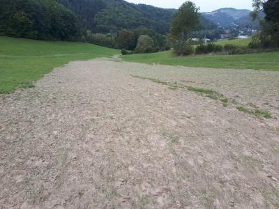 Abfluss des humosen Oberbodenmaterials in Richtung Tal (Offsite-Schäden).
