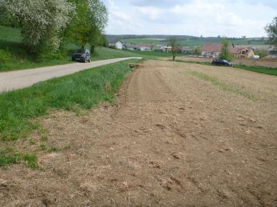 (5) Straßengraben ufert bei starkem Abfluss in eine (zum Aufnahmezeitpunkt noch nicht) begrünte  Abflussmulde aus