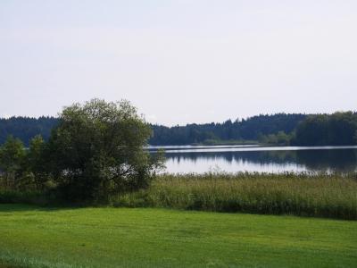 Der Pelhamer See