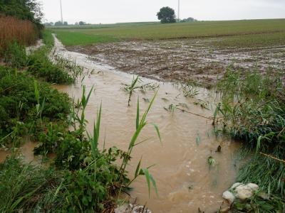 Abflüsse sammeln sich am Fuß der langen Äcker und fließen direkt oder über Wegseitengräben in Bäche. Dadurch entstehen hohe EInträge und Hochwasserprobleme