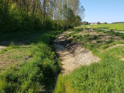 Abbildung 2: Uferaufweitungen und Gehölzanpflanzung am Mooshamer Graben