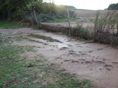 Erosion staut sich vor einem Zaun. Der Boden drückt sehr stark gegen den Zaun.