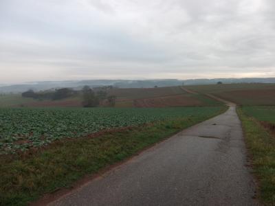 Muldenzug  bei Hechelbach