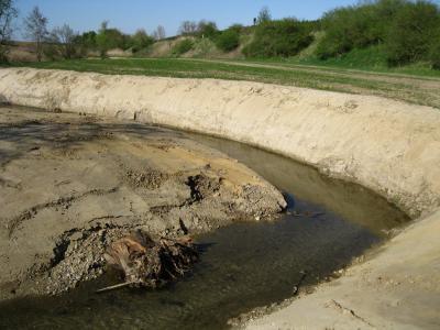 Möglichkeit der eigendynamischen Entwicklung im Altwasserbereich