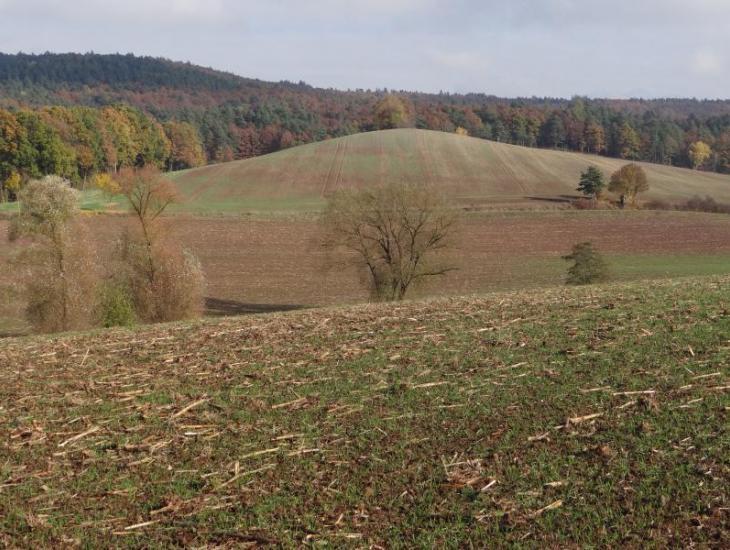 Landschaft im Projektgebiet