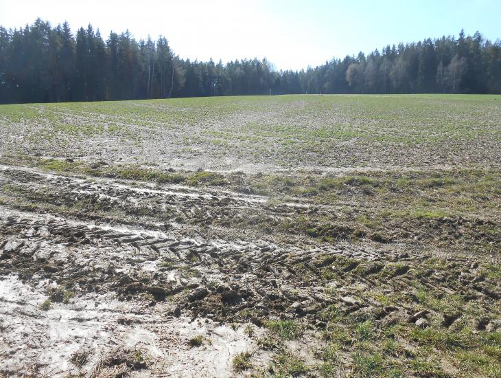 Eine geneigte Ackerfläche in Kuppenlage. An dem Grünweg davor sieht man noch die Offsite-Erosionsspuren, die ein vergangener Starkregen hinterlassen hat.