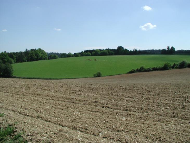 Foto ALE Oberbayern