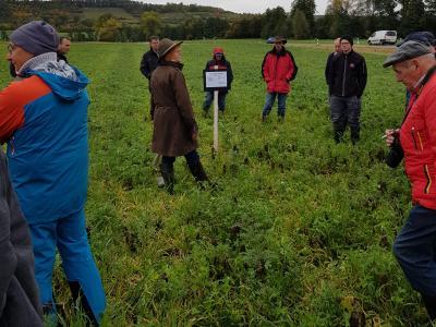 Frau Riedel vom Amt für Landwirtschaft und Forsten in Uffenheim vor einer von mehreren Parzellen mit  Zwischenfruchtmischungen