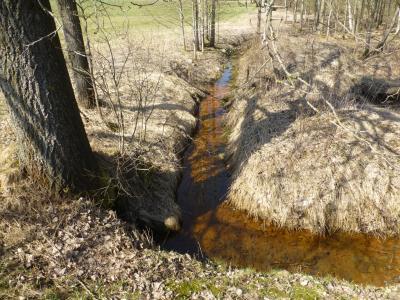 Im Graben, der die Drainagewasser sammelt, sieht man die rostrote Färbung von Eisenausfällungen