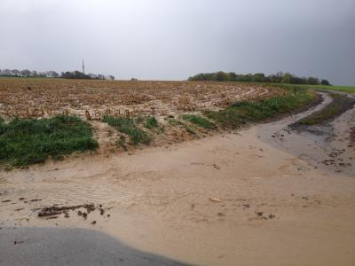 Erosionsmaterialführender Oberflächenabfluß macht sich auf den Weg in Richtung Gewässer....