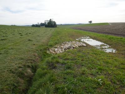 Abbildung 6: Graben südlich von Loh mit Blick auf die Pufferfläche und eine der angelegten Sickermulden